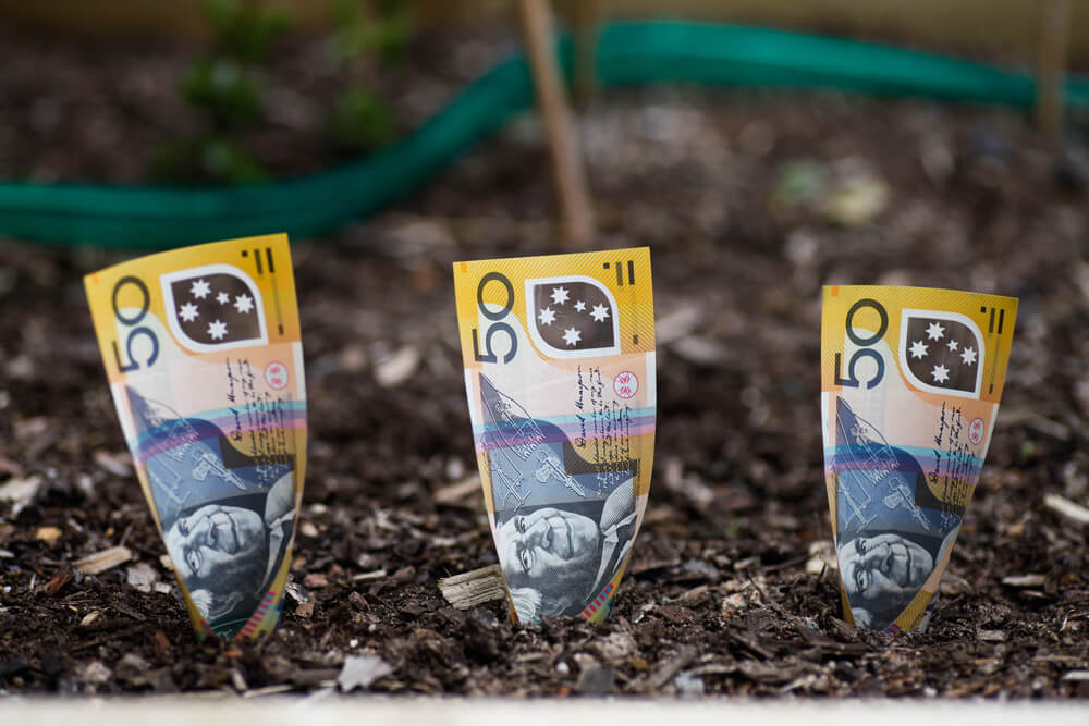 money growing out of the ground